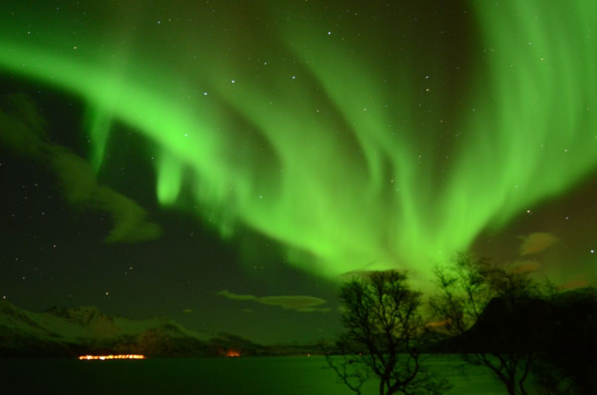 MY ARCTIC ADVENTURE - The Land of The Northern Lights!